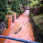 hot spring in Furnas Azores by NightSlown