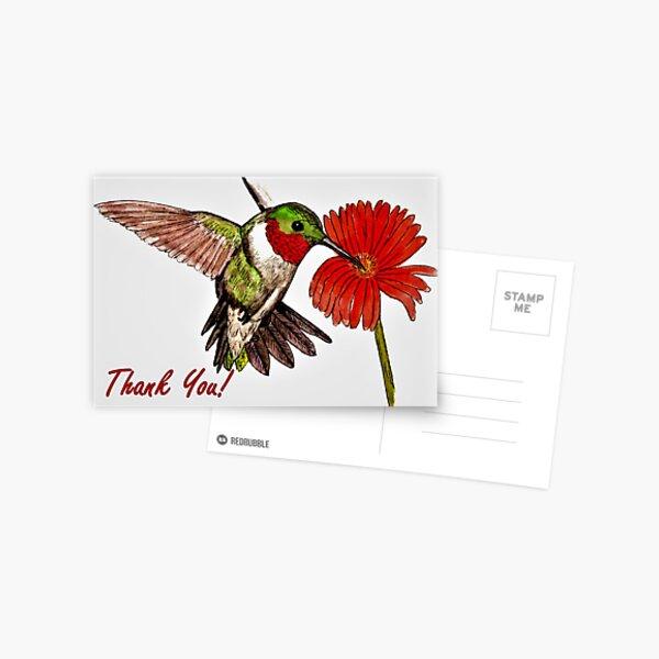 Humming Bird - Thank You Card Postcard