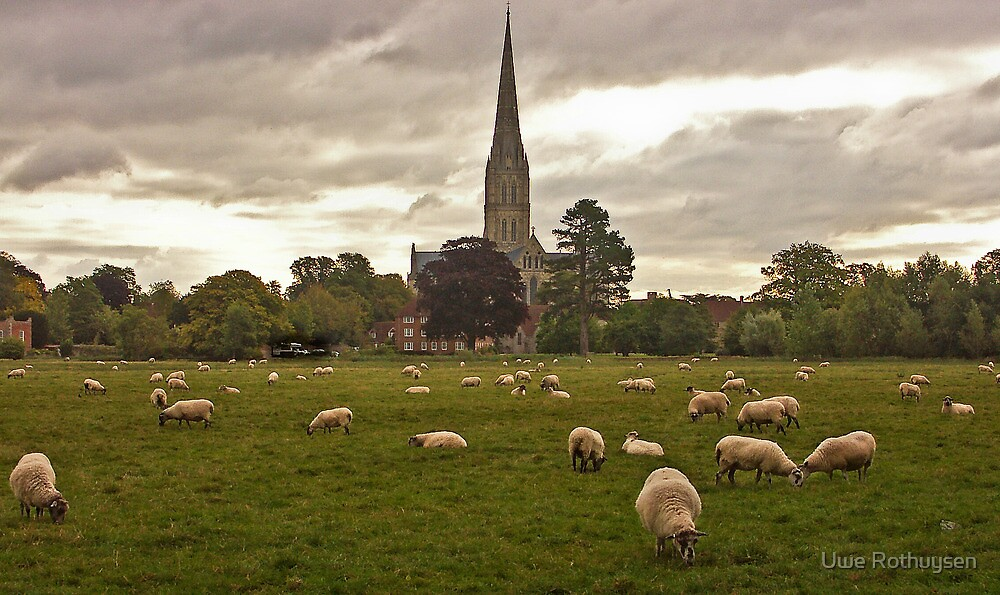 Sheeps with cathedral by Uwe Rothuysen