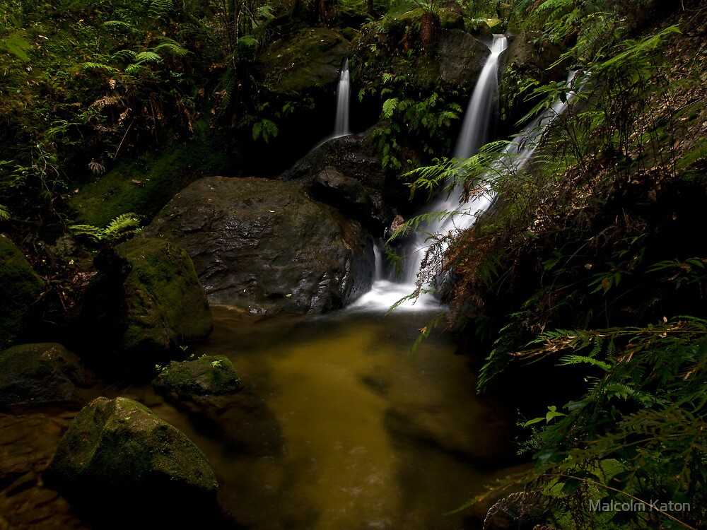 Fairyland - Valley of the Waters, Blue Mountains NSW by Malcolm Katon