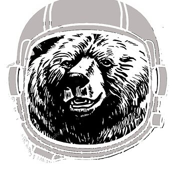 bear in space, space bear, design by Jobrien58