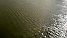 Ripples on the Rhine by Marjolein Katsma
