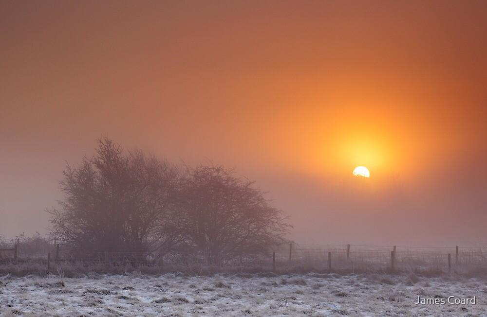 Christmas Sunrise by James Coard