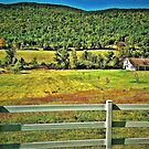 Somewhere in Vermont  by Doug Michael