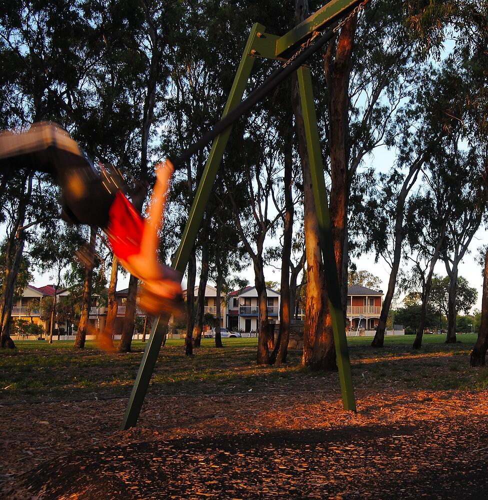Girl on a Swing by Bas Van Uyen