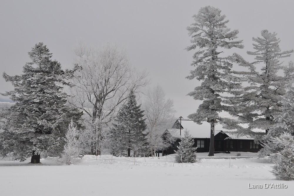 Christmas Morning... by Lana D'Attilio