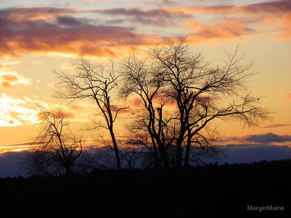 Sunset Sky of Blue and Gold by MaryinMaine