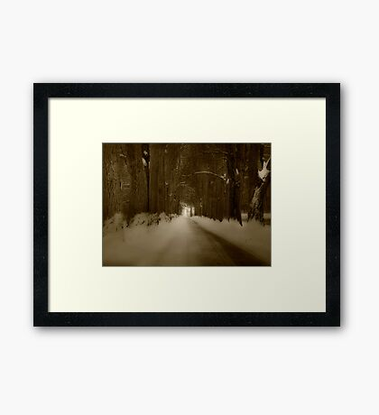 Bride in Woods Framed Print