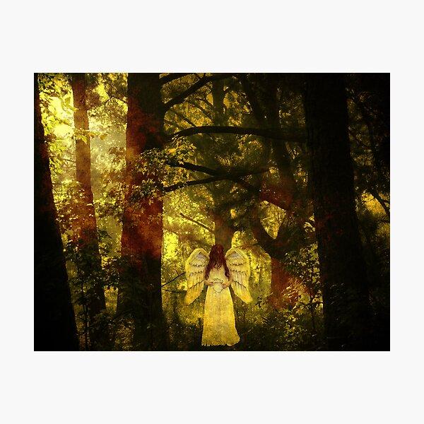 Celestial Photographic Print