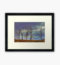 Hilltop Trees_1 Framed Print