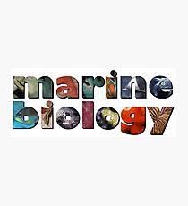 Marine Biology Photographic Print