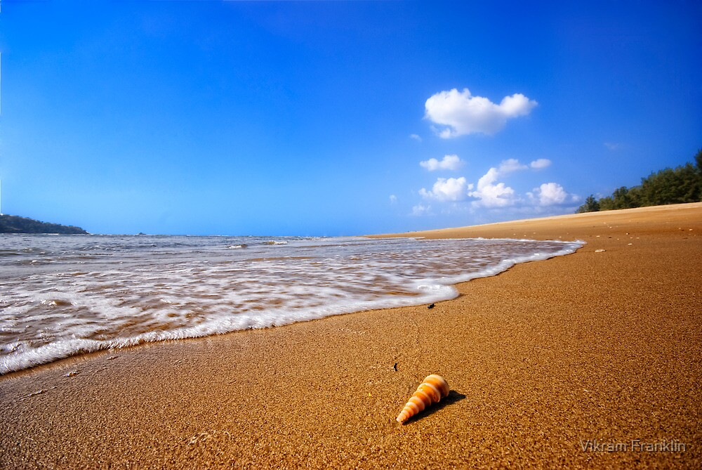 A little bit of paradise by Vikram Franklin