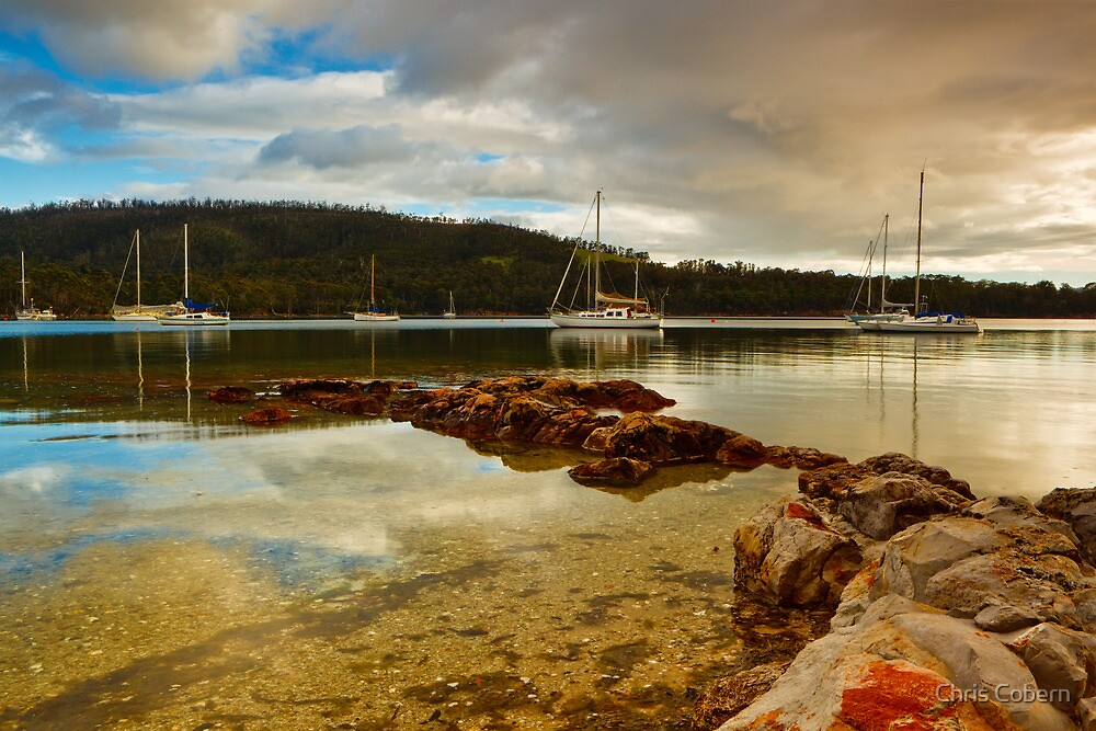 Boats at Oyster Cove by Chris Cobern