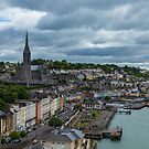 City of Cork Harbor and Park by DARRIN ALDRIDGE