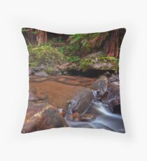 Gellibrand River, the Otways. Throw Pillow