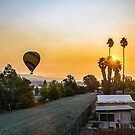 Early Morning Pleasure Ride by Maurine Huang