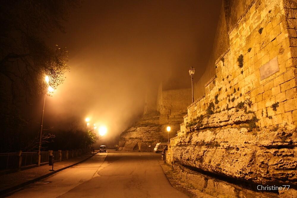 Castello di Lombardia (Enna, Sicily) by Christine Oakley