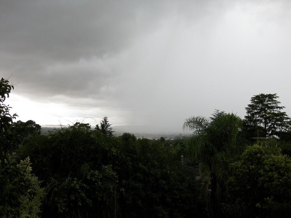 wiradjuri storm by aboriginalart