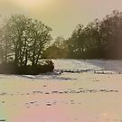 Late afternoon sun on snow by inkedsandra