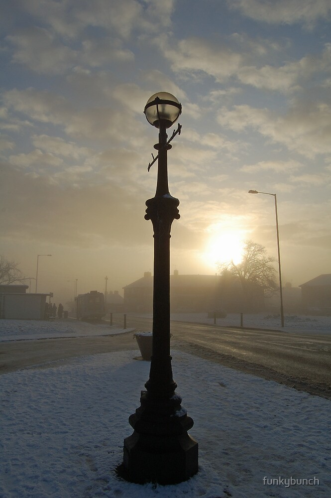 Winter streetlight by funkybunch