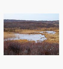 Oyster Pond Photographic Print