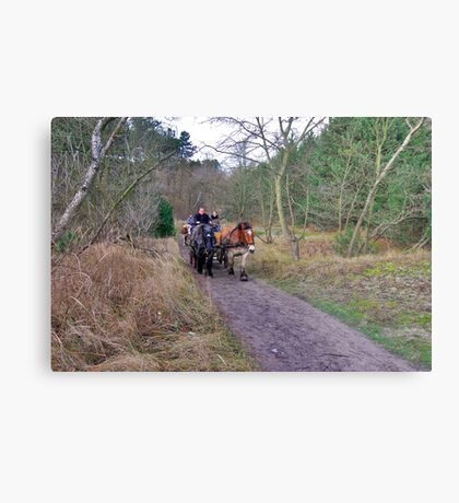 A ride through the forest Metal Print
