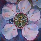 Tea-Tree Flower by Debby Haskard-Strauss