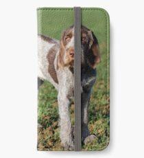 Italian Spinone Puppy Portrait iPhone Wallet/Case/Skin