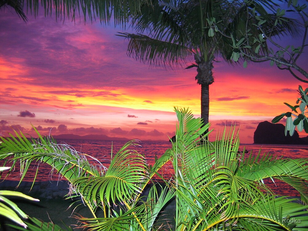 Sunset on Beach by Rodka