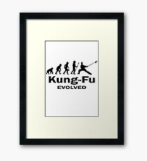Kung- Fu Evolved Framed Print