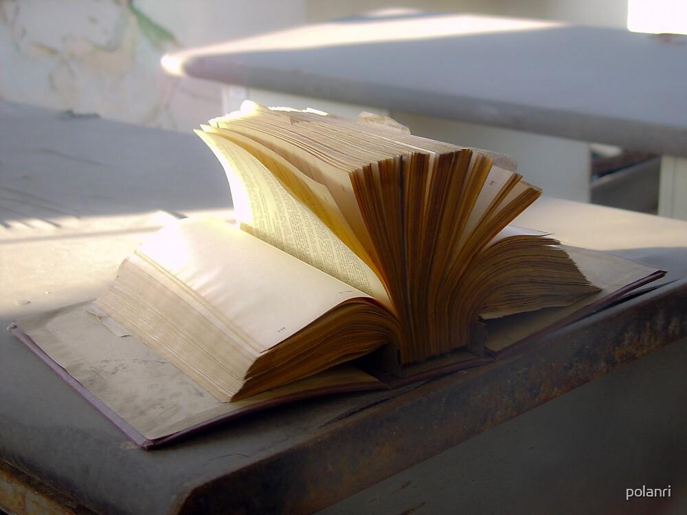 Abandoned book by polanri