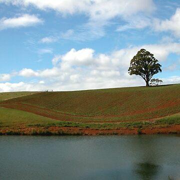 Rich farming land, Northern Tasmania, Australia. by kaysharp