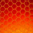 Honeycomb Gold - The Bee's Gift by John Kelly Photography (UK)