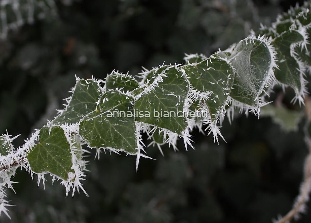 Icy heart by annalisa bianchetti