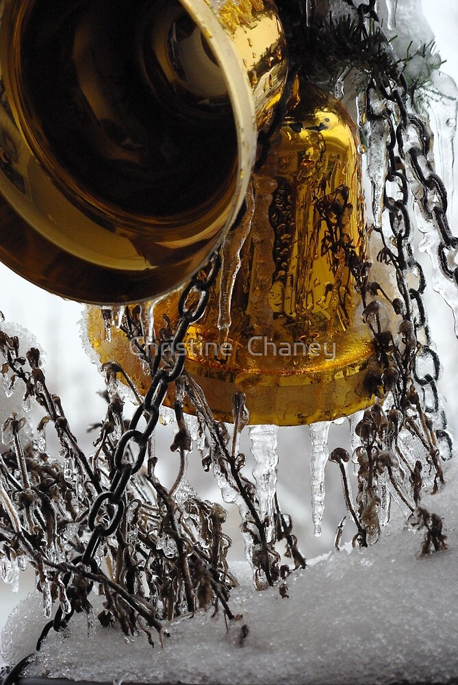 Silver and Gold.. by Christine  Chaney