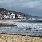 Lyme Regis Today ............. by lynn carter