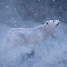 Majestic white wolf in snow. by 3DArtRebel