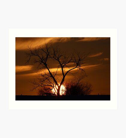 Fireball Sunset tree Art Print