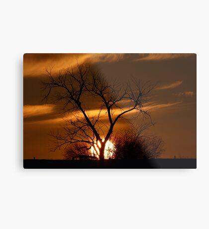 Fireball Sunset tree Metal Print