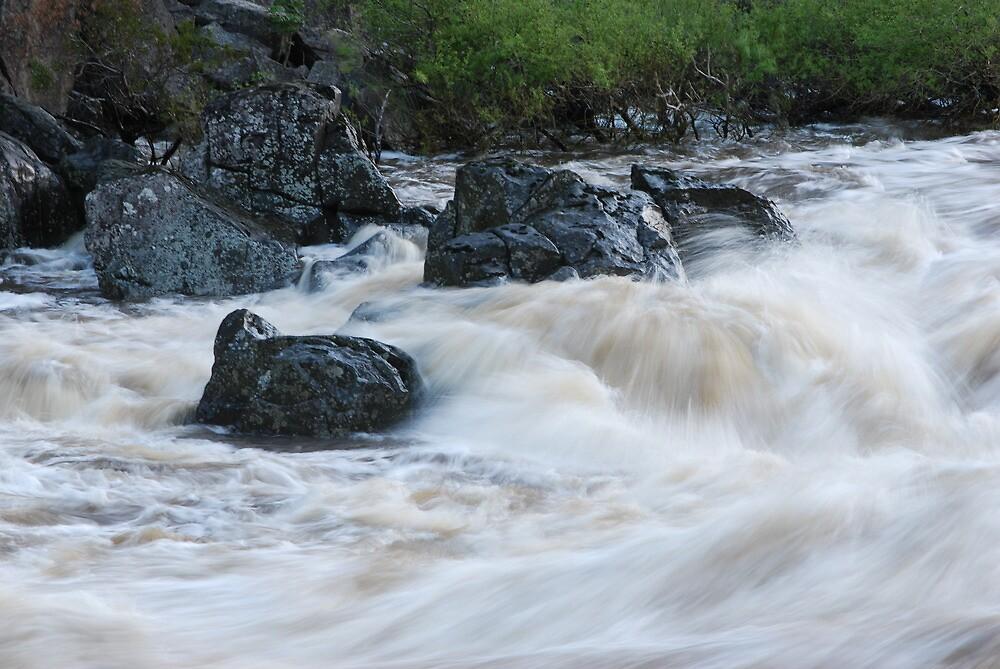 Wild Water - Launceston Cataract Gorge by Jenni Greene