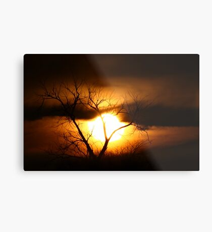 Gloom - Tree Metal Print