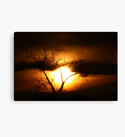 Gloom - Tree Canvas Print