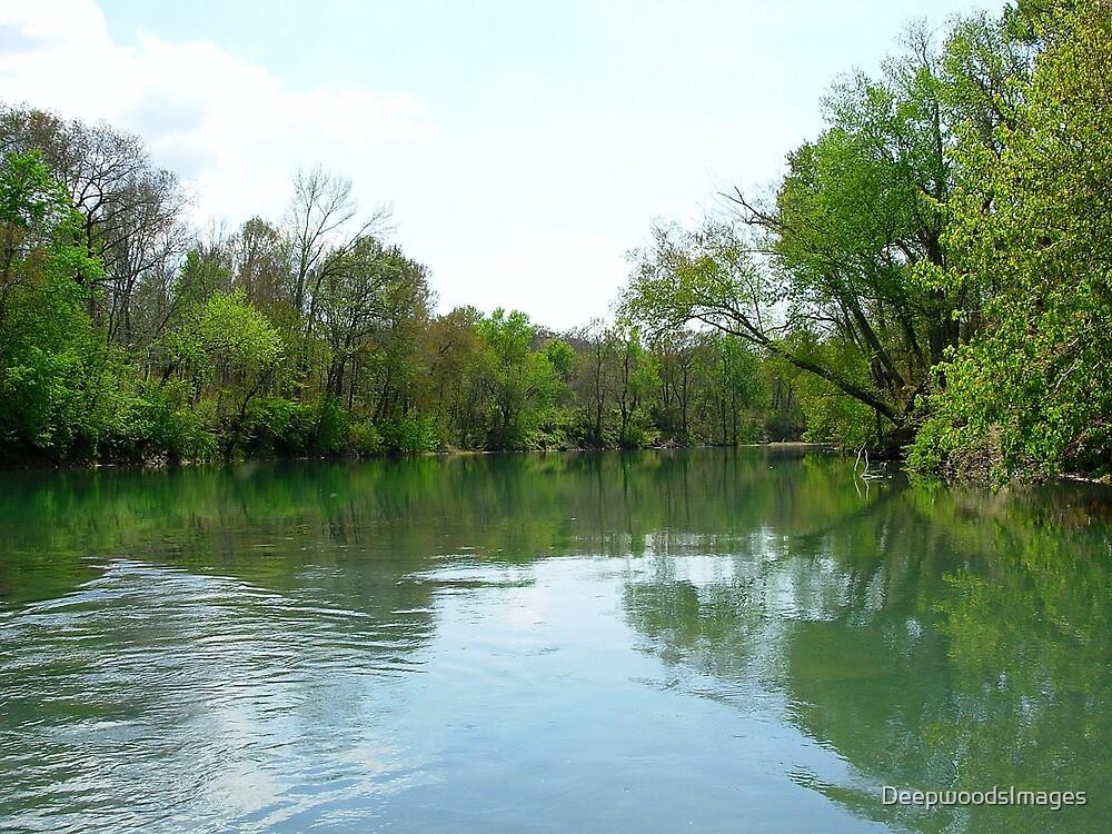 Spring on Lee creek Oklahoma by DeepwoodsImages