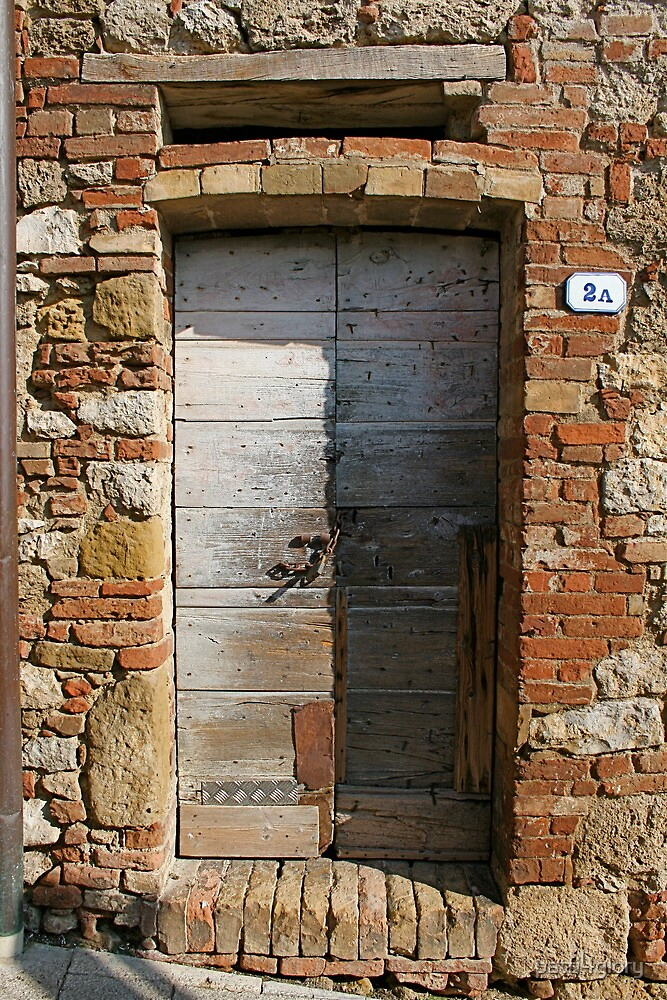 Doors of Italy by patti4glory