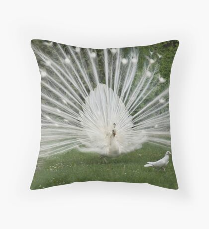 Chasing a pigeon Throw Pillow