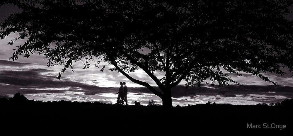 Evening Walk by Marc St.Onge