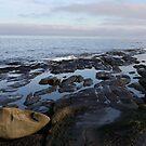 receding tide by TerrillWelch