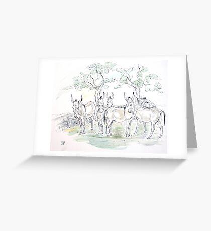 """Landscape with sardinian donkeys"" Greeting Card"