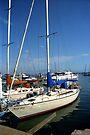 Docked in Ensenada by Vicki Pelham