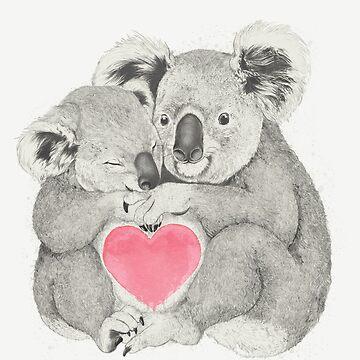 Koalas lieben Umarmungen von lauragraves